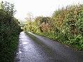 Road at Moneygreggan - geograph.org.uk - 1017981.jpg