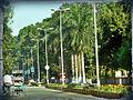 Roads inside Bongaigaon Refinery Township.jpg