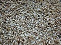 Roasted rice seed in Bangladesh.jpg