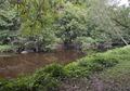 Rock Creek Park, NW, Washington, D.C LCCN2010641495.tif