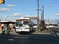 Rockaway Parkway bus vc.jpg