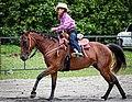 Rodeo in Panama 23.jpg