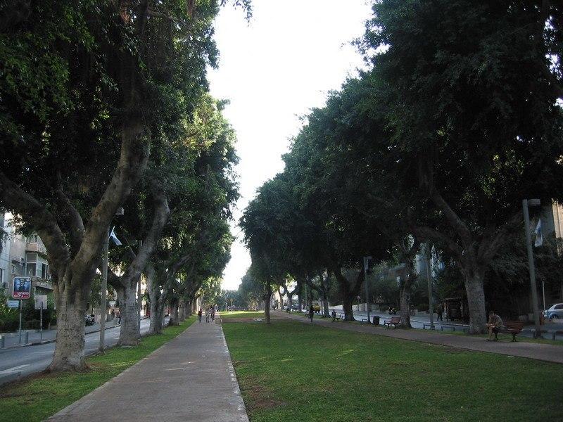 Rothschild Boulevard4