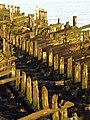 Rotting Pier - geograph.org.uk - 1083130.jpg
