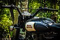 Royal Enfield Black (187932387).jpeg
