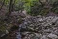 Ruisseau du Vialais, Haut-Languedoc, Rosis cf06.jpg
