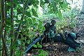 Rutgers Gardens in New Brunswick New Jersey statues near a pond ImageNumber 24.jpg
