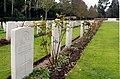 Südfriefhof Köln - Commonwealth cemetery - Grabsteine mit Rosen (8869-71).jpg