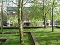 SCCC lawn.jpg