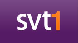 SVT1 logotyp.png