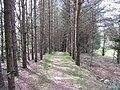 Salakas, Lithuania - panoramio (182).jpg