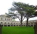 Salisbury Cathedral Cloister 04 (4652500949).jpg