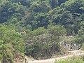 Salto de Agua, Chis., Mexico - panoramio (17).jpg