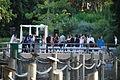 San Diego Zoo Safari Park 67 2014-08-29.JPG