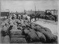 San Francisco Earthquake of 1906, Restacking potatoes after the rain - NARA - 522939.tif