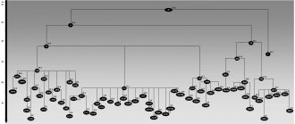 Haplogroup J (mtDNA) - Schematic tree of mtDNA haplogroup J. Ages (in ka) indicated are maximum likelihood estimates obtained for the whole-mtDNA genome.