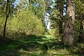 Schleswig-Holstein, Fockbek, Naturschutzgebiet Fockbeker Moor NIK 1621.jpg