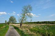 Schleswig-Holstein, Vaale, Vaaler Moor NIK 0451.JPG