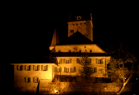 SchlossAarwangenNacht.png