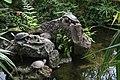 Schmetterlingsgarten, Schildkröten (2007-04-01 Sp).jpg