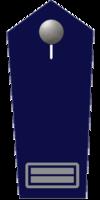 Brandoberinspektor/-in
