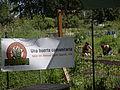 Seattle - Marra Farm 07.jpg
