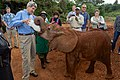 Secretary Kerry Feeds a Baby Elephant at the Sheldrick Elephant Orphanage in Nairobi (17332222906).jpg