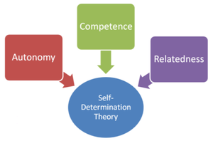 Self-determination theory - Image: Self Determination Theory