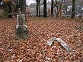 Shady Grove Cemetery Memphis TN 2012-12-09 008.jpg