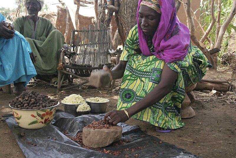File:Shea nut processing in Burkina Faso.jpg