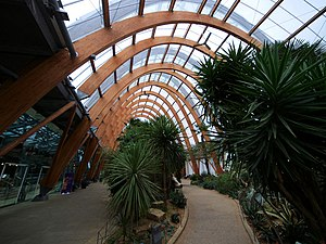 Glued laminated timber - Glulam arches of the Sheffield Winter Garden