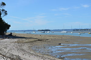 Shelly Park Beach - View towards Waiheke Island