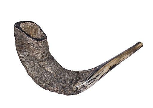 Shofar-16-Zachi-Evenor