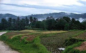 Sierra Bullones, Bohol - Image: Sierra Bullones Bohol