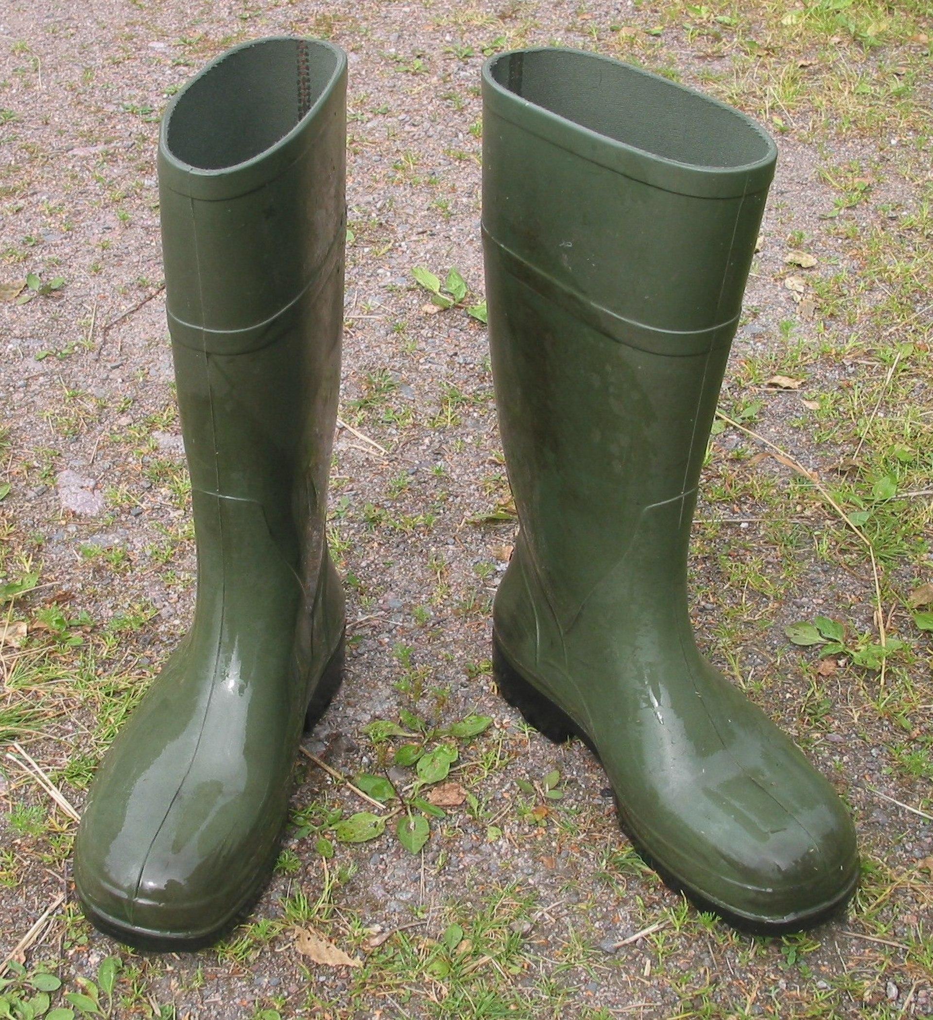 Wellington Boot Wikipedia