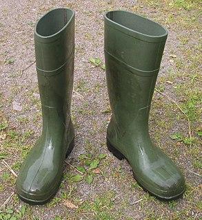Wellington boot Type of footwear
