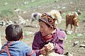 Silk Road 1992 (4367441747).jpg