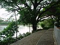 Sitting Place- Lotus Pond.JPG