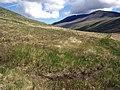 Slow going in Glen Iorsa - geograph.org.uk - 447299.jpg