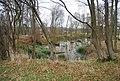 Small pond in a woodland near Turzes Farm - geograph.org.uk - 1105820.jpg