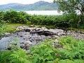 Small stone bridge on the Loch Morar path - geograph.org.uk - 524291.jpg