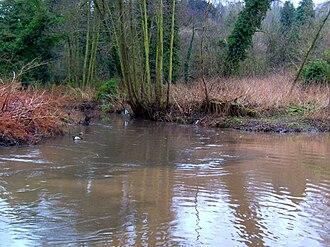 River Stour, Worcestershire - Image: Smestow Brook 18 Stour confluence