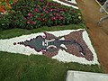 Snap from Lalbagh Flower Show Aug 2013 8360.JPG