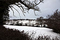 Snow covered fields towards Old Brampton - geograph.org.uk - 1154506.jpg
