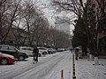 Snow in Beijing - panoramio.jpg