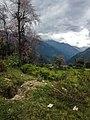Somewhere In Dzongri Trek (168283917).jpeg
