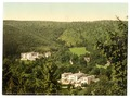 Spring House and Hartzburghof, Harzburg, Hartz, Germany-LCCN2002713805.tif