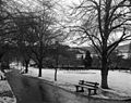 St David's Park - Hobart under snow circa 1951-1973 (15398973445).jpg