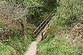 St Gennys, footbridge - geograph.org.uk - 1267780.jpg