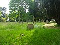 St Mary the Virgin's Church, Worplesdon Road, Worplesdon (May 2014) (Graveyard 1).JPG